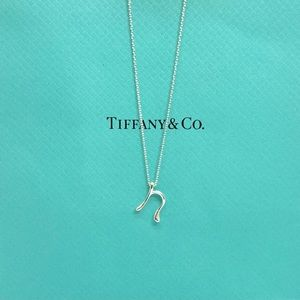 Tiffany & Co. Initial letter N pendant necklace 16